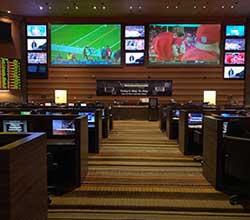sports betting tutorials
