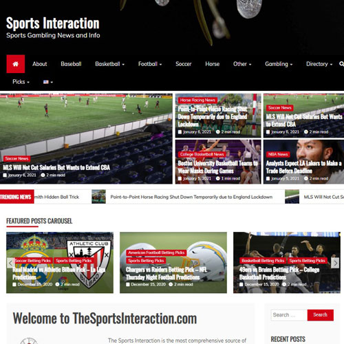 thesportsinteraction
